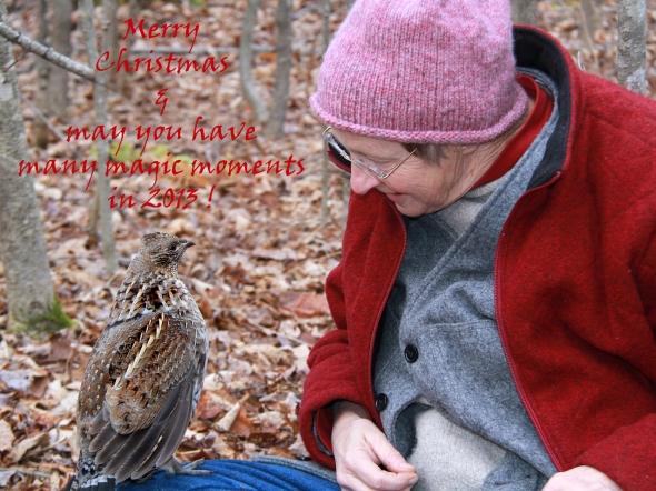 12-23-12 Merry Christmas 2013  IMG_3622