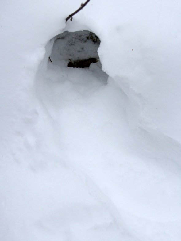 1-3-12 grouse tunnel IMG_0042