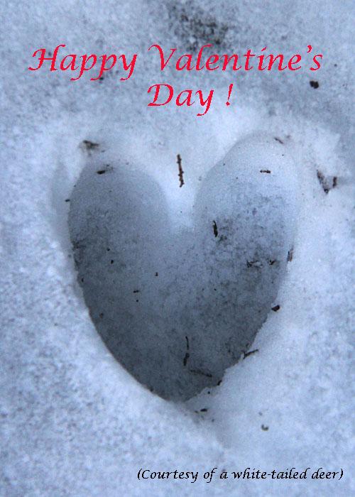 2-14-13 Happy Valentine's Day IMG_0127