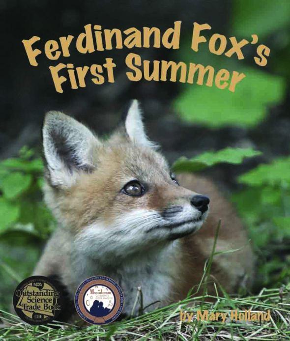 100 ppi FerdinandFox2