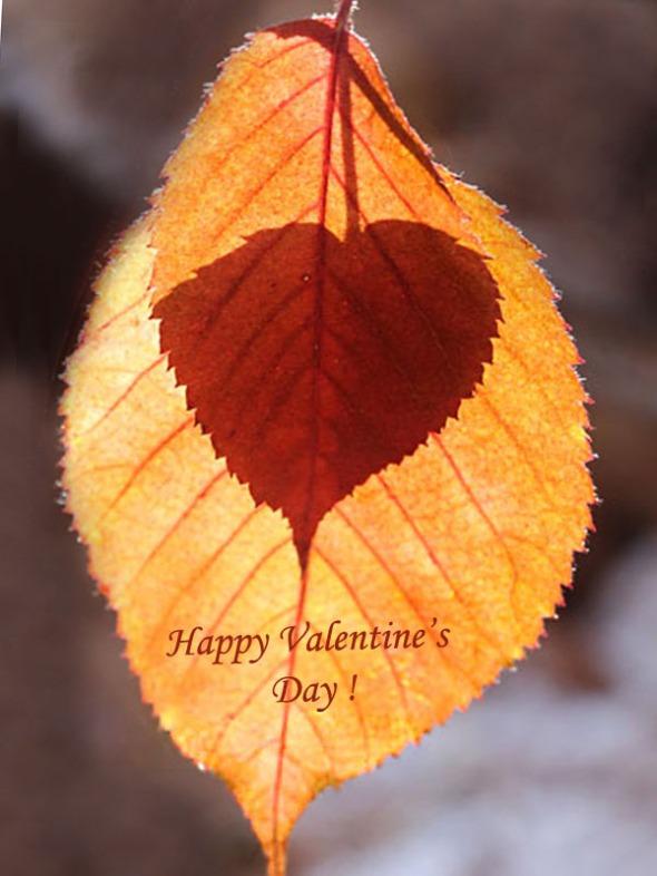 2-14-14 leaf heart  038