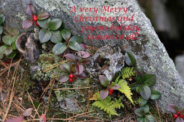 12-25-15 Merry Christmas MH_20091011_004737_4