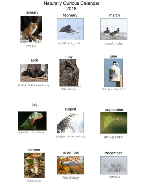 sheet with tiny images2
