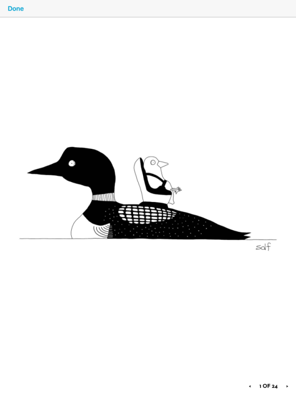 loon cartoon from Susan Kellogg IMG_0969 (002)