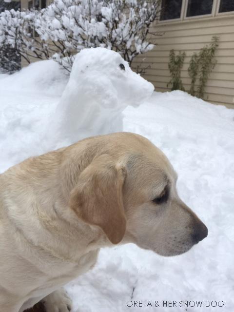 E- Greta & snow dog -iphone image of snow and real GretaIMG_5270 (003)
