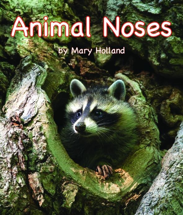4-20-19 AnimalNoses (002)