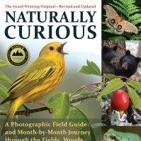 Naturally Curious with Mary Holland | An online resource based on the  award-winning nature guide – maryholland505@gmail.com